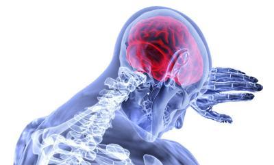 Neurosciec