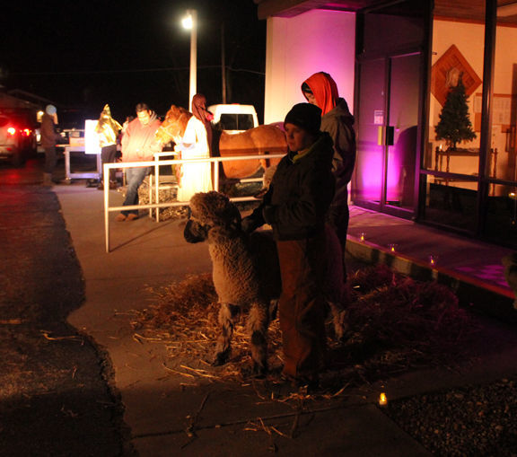nativity sheep web.jpg