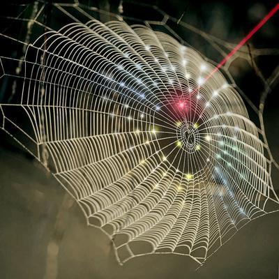 Spider web tech