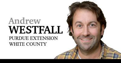 Andrew Westfall column sig