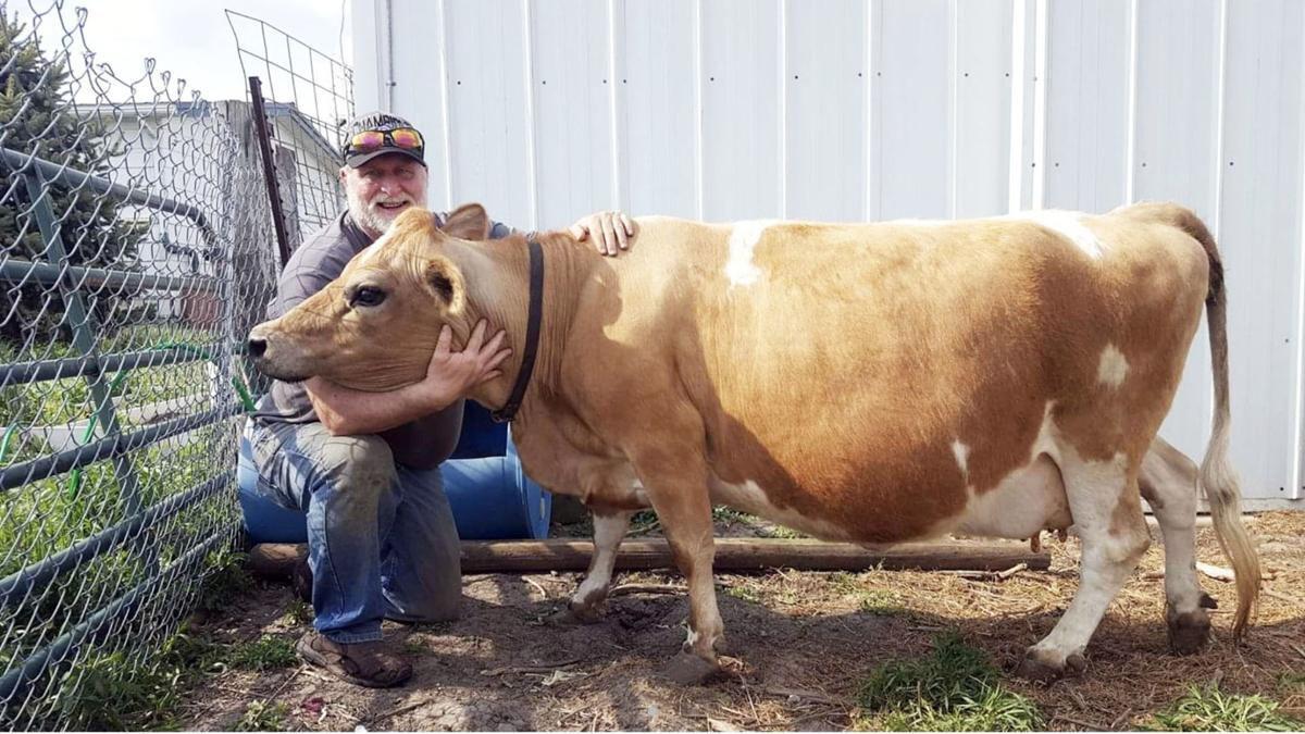 State Farm Article Pic 2.jpg