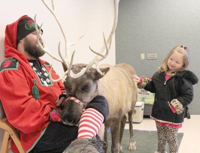 2018 reindeer