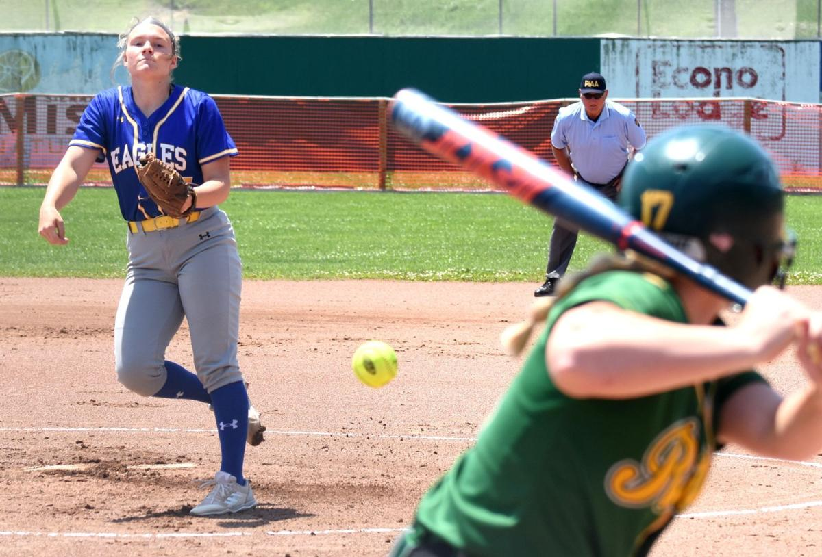 Line Mountain wins back-to-back district titles