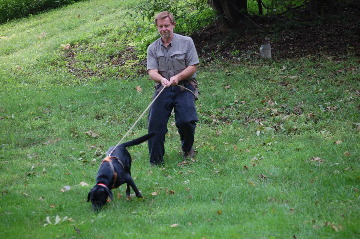 Leashed Tracking Dogs Now Legal In Pennsylvania For