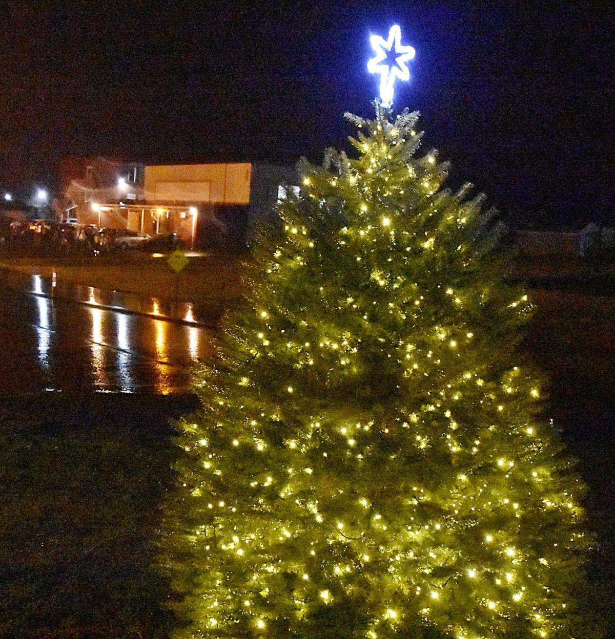 Elysburg Christmas tree illuminated