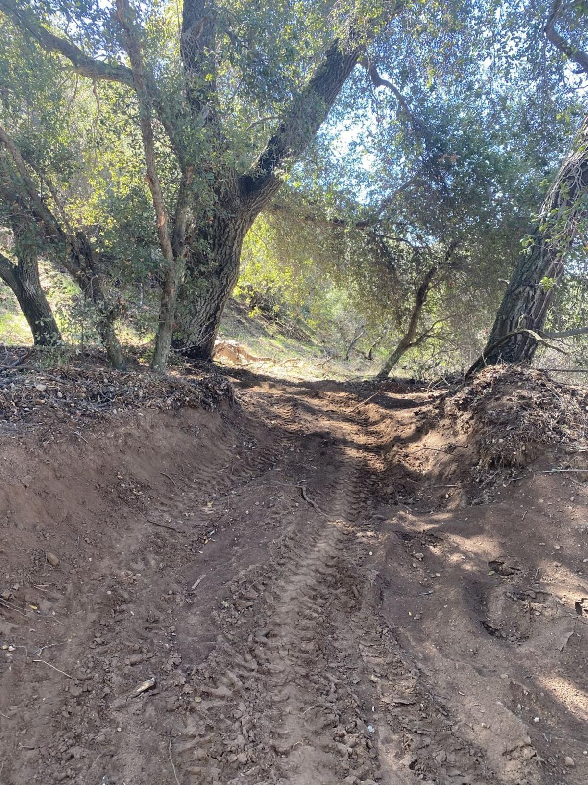 New mountain bike course