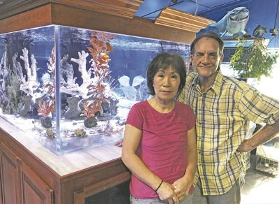 Shillington Aquariums is a Calimesa favorite