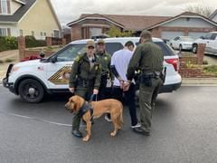 Yucaipa deputies and Rancho Cucamonga K9 Nyx, arrested three subjects who fled from police in a stolen vehicle