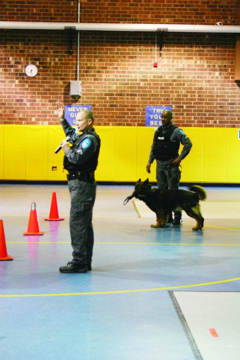 K9s and Education