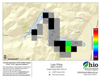 Lake White - Updated satellite imagery from June 1