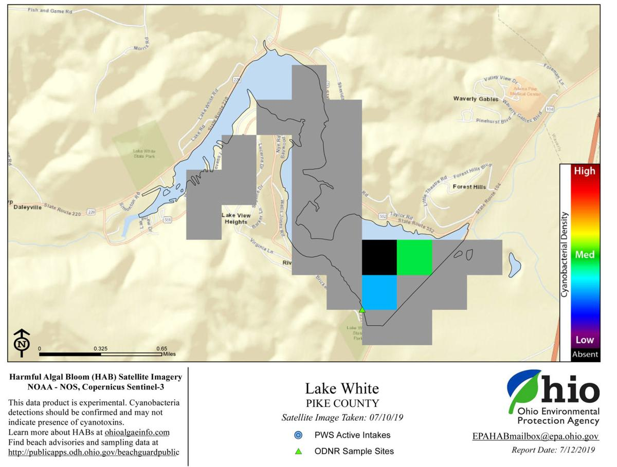 Pike County General Health District provides update on possible Harmful Algal Blooms in Lake White