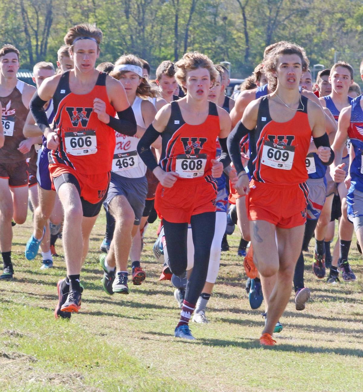 Waverly Tigers and Eastern's Abby Cochenour qualify for regional, Page B1