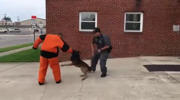 Spike's K9 Fund presents bite suit to Waverly Police Department
