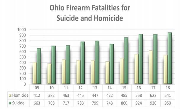 Firearm Fatalities - Suicides