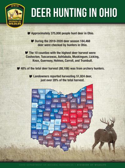 Deer hunting graphic