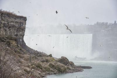 Niagara Parks Police say man survived plunge over Horseshoe Falls