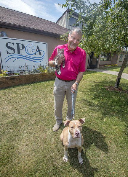 SPCA of Niagara still pushing no-kill mission