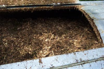 NY bill would let corpses be used for composting