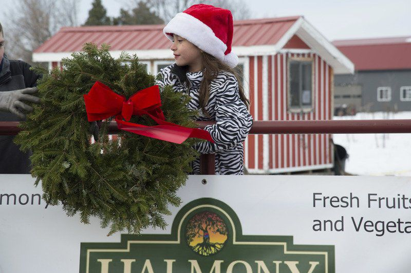 holiday local farm offers free christmas trees to needy families