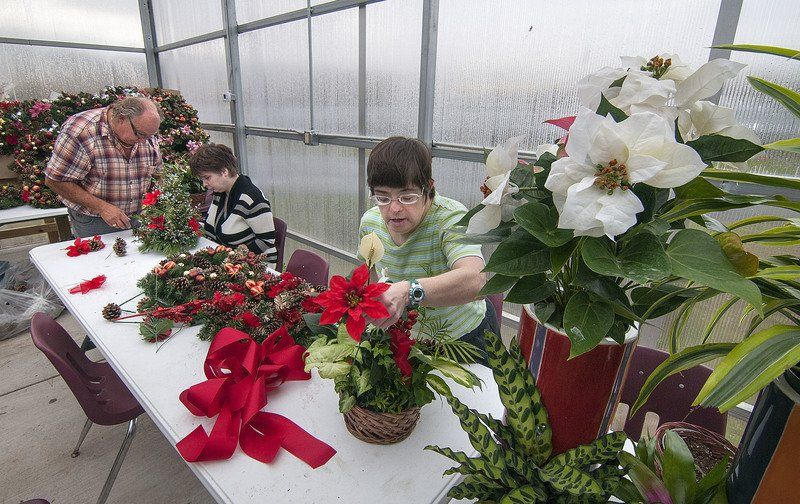 Deadline approaching for Opportunities Unlimited's holiday floral arrangements