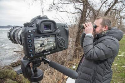 Birds on the Niagara going virtual this year