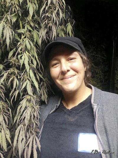 Hemp growers take split paths on recreational pot