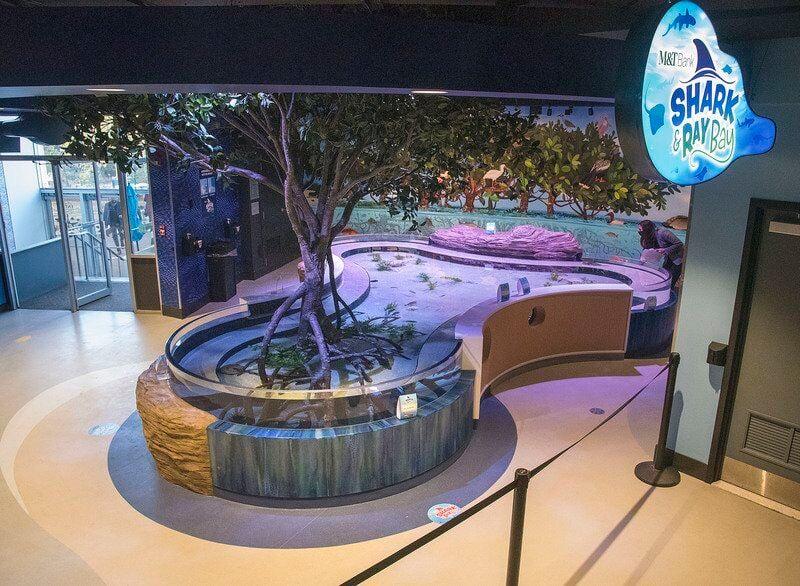 Aquarium unveils newest exhibit