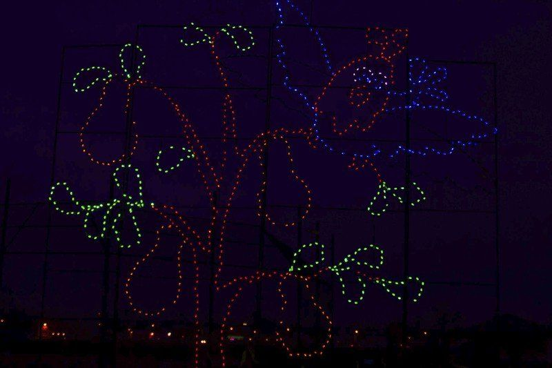 holiday lights returning to hyde park