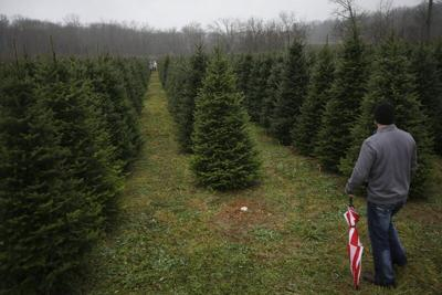 Rethinking holidays: Traditions, change are on the table