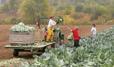 071018 Farm Labor 4 - NG