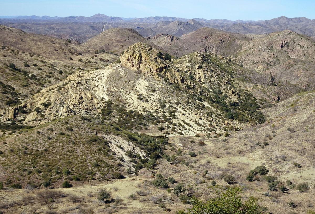 Pajarita Wilderness