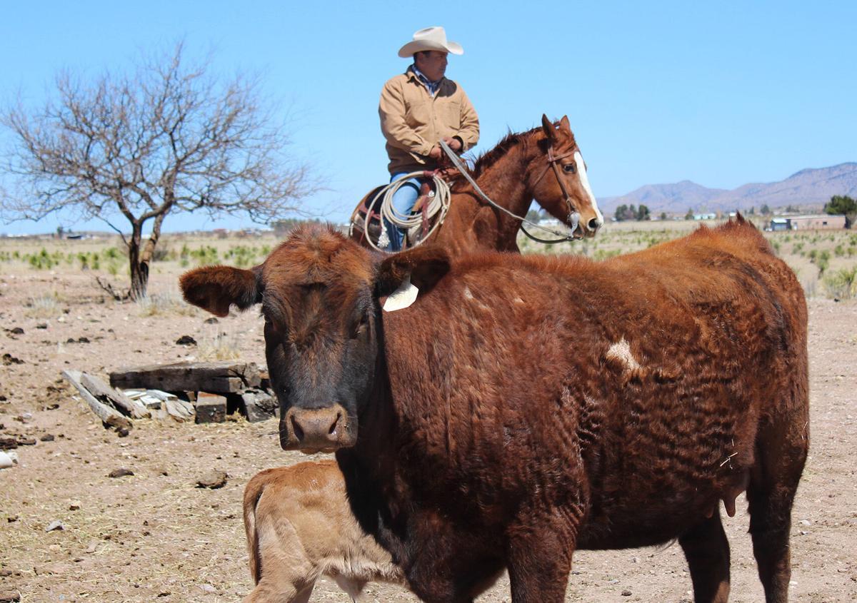 Ralph Quiroz ranch
