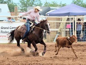 County OKs livestock show, rodeo at Sonoita Fairgrounds