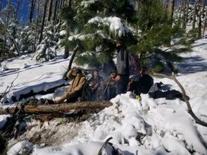 Five migrants rescued from snowy mountains