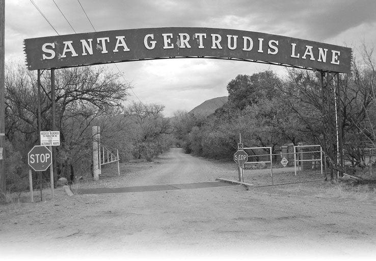 Santa Gertrudis Lane near Tubac is for the birds