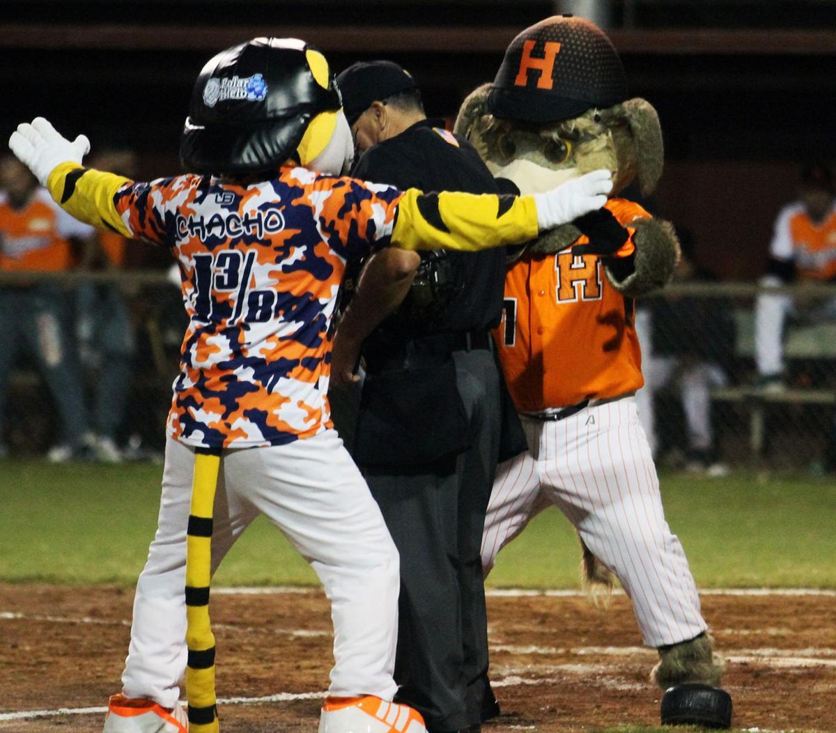 Baseball Fiesta