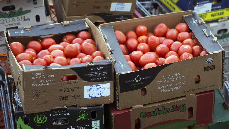 Arizona delegation speaks up on tomato import dispute