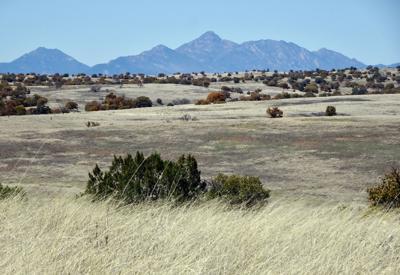 Eastern Santa Cruz County secession study dies in Arizona