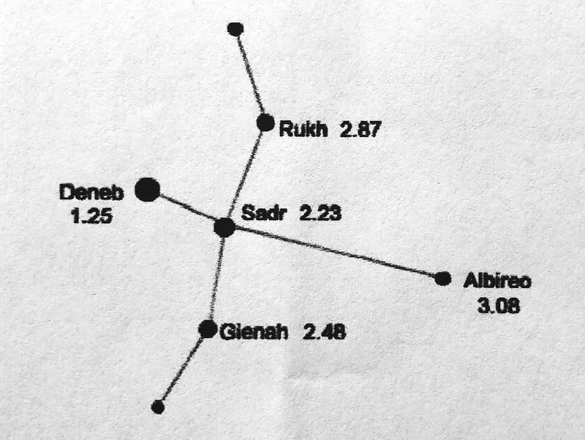 Satrgazing Cygnus