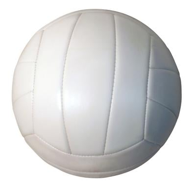 Volleyball graphic.jpg