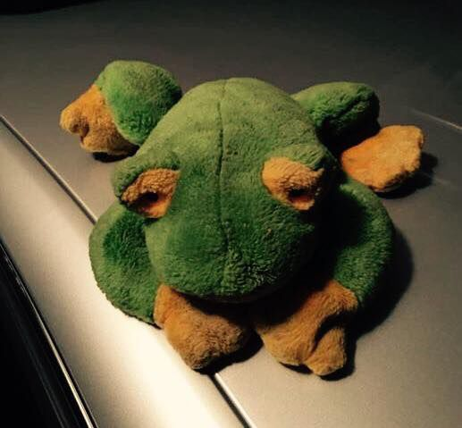 Council Bluffs police seek help in finding family who lost a frog ...