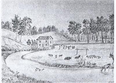 Mosquito Creek Mill.