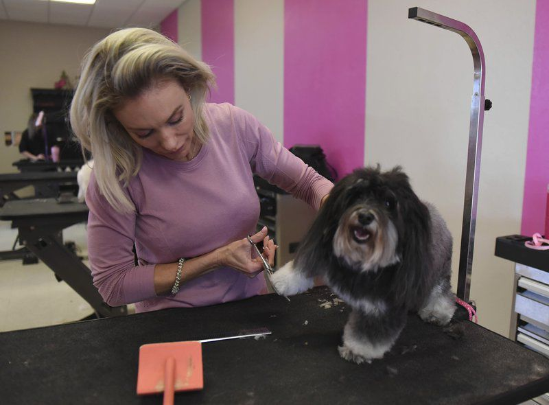 New research shows pet care spending has doubled in past decade