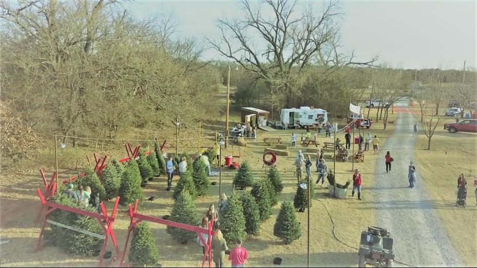 Wells Christmas Tree Farm