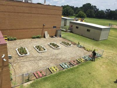Grant allows garden project to be completed