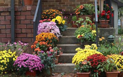 Decorate your porch for fall