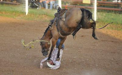 Rodeo Ropes In Family Fun Local News Normantranscript Com