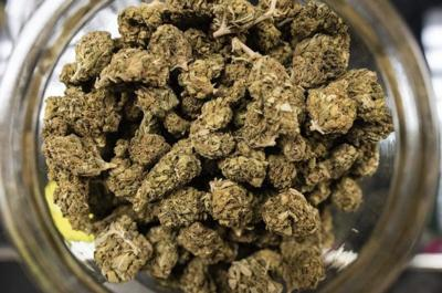 Marijuana Authority: Dispensary locations are secret