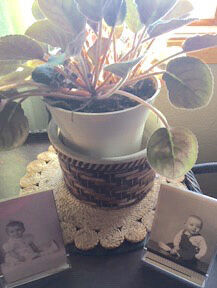 Steele: Stoneware bowls and memories