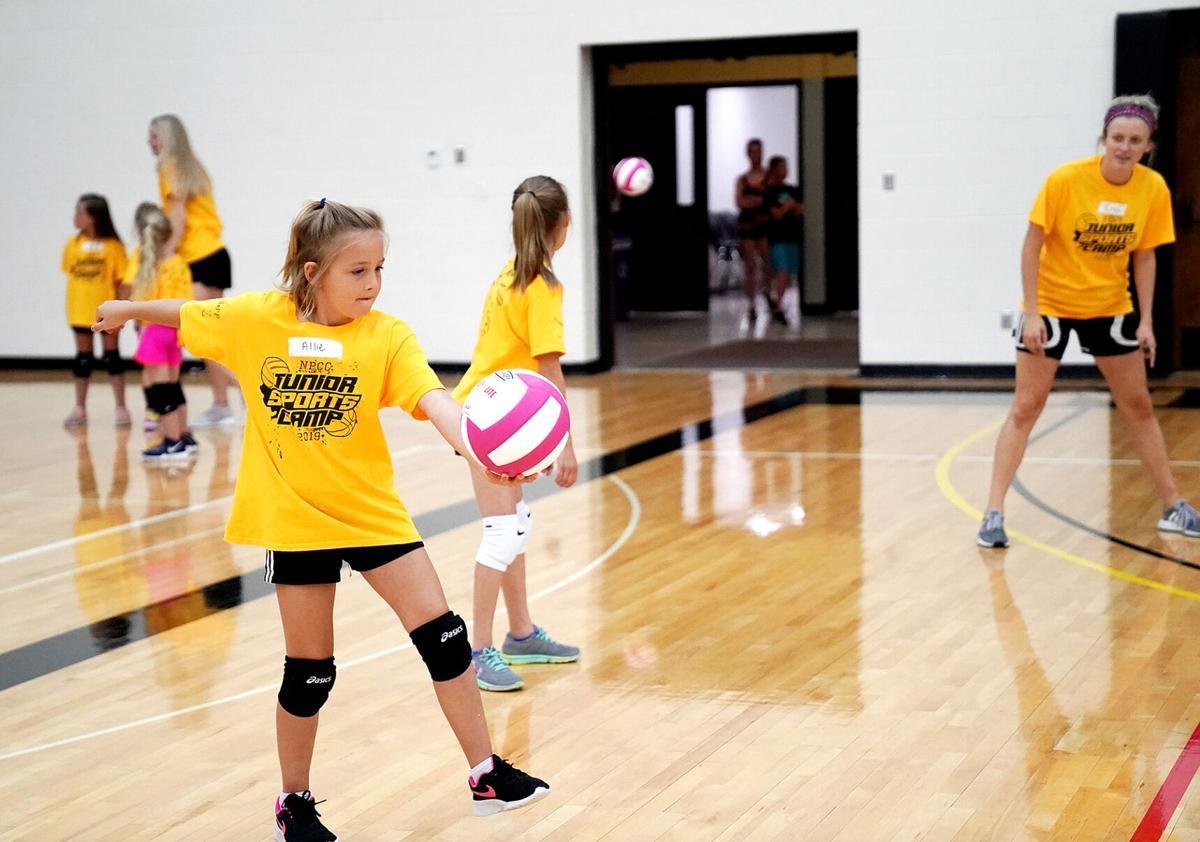 New Dates Announced For Npcc Women S Basketball Volleyball Camps Sports News Nptelegraph Com